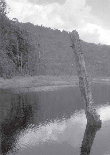 Las dos orillas del río - Portal de la Cultura de América Latina y el ...