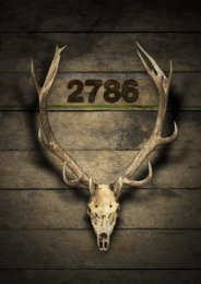 2786 - Themenspecial