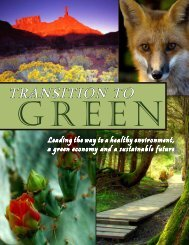 Transition to Green - 2009