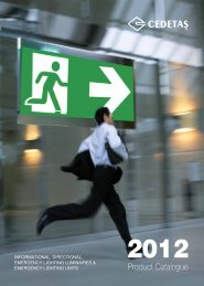 Information,Directional and Emergency Lighting ... - CEDETAŞ