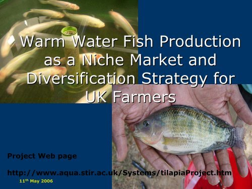 Warmwater Fish - Rural Economy and Land Use Programme