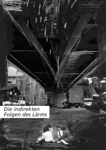 2. Die indirekten Folgen des L. - Lärm.Schweiz