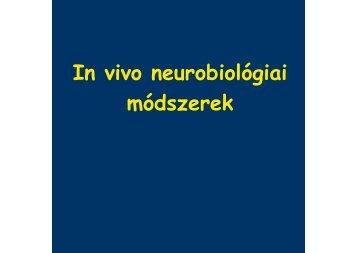 4. előadás: In vivo neurobiológiai módszerek