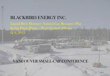 Montney Shale Presentation - Blackbird Energy Inc.