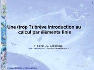 Une (trop ?) brève introduction au calcul par éléments finis