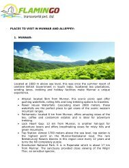 Places to visit in munnar and alleppey