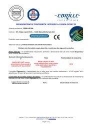 dichiarazione di conformità Espanseco CE
