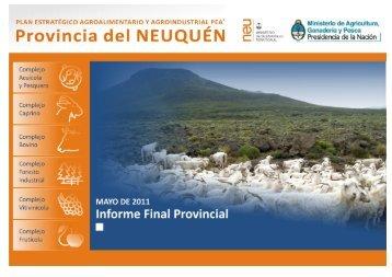 Informe PEA2 Neuquén.pdf [5.381KB] - Gobierno de la Provincia de ...