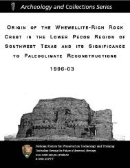Origin of the Whewellite-Rich Rock Crust in - National Center for ...