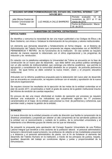 Segundo Informe - Universidad del Tolima