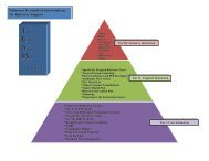 Pathways Pyramid of Interventions for Behavior Support