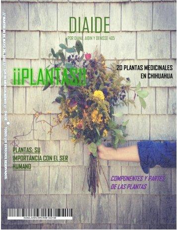 DIAIDE ¡¡PLANTAS!!