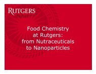 Food Chemistry at Rutgers: from Nutraceuticals to Nanoparticles