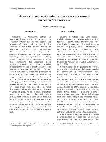 técnicas de produção vitícola com ciclos sucessivos em condições ...