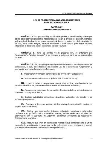 LEY DE PROTECCIÓN A LOS ADULTOS MAYORES PARA ...