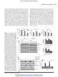 Fibroblast growth factor receptor-mediated signals contribute to the ... - Page 5