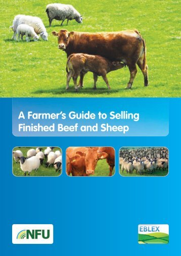 A Farmer's Guide to Selling Finished Beef and Sheep - Eblex