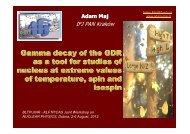 Adam Maj - Bogoliubov Laboratory of Theoretical Physics - JINR
