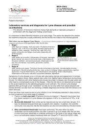 6b Infectolab Borreliose Labor und Diagnostik engl ... - BCA-clinic