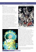 INFLUENZA - Microbiology Online - Page 2