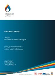 Progress Report of the Fire Services Reform Progam