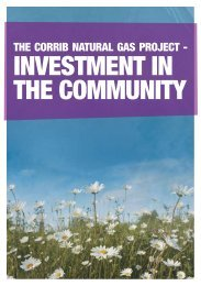 INVESTMENT IN THE COMMUNITY