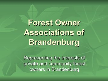 Forest owner associations, Brandenburg - FUTUREforest