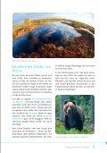 Faszinierende Vielfalt - Seite 3
