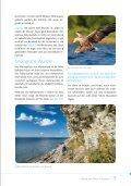 Faszinierende Vielfalt - Seite 5