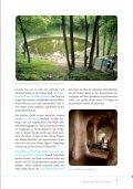 Faszinierende Vielfalt - Seite 7