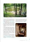 Löytöjä joka askeleella - Visitestonia.com - Page 7