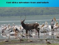 East Africa Adventure Tours and Safaris
