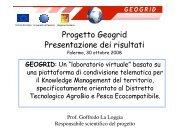 Progetto Geogrid Presentazione dei risultati - Università di Palermo