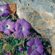 Il genere Allium (Alliaceae) in Sicilia - Natura Mediterraneo
