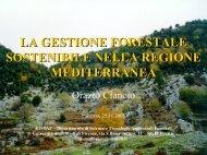 Teoria e metodo della gestione forestale sostenibile - Università di ...