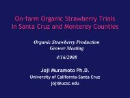 Organic Strawberry Trial in Santa Cruz and Monterey Counties