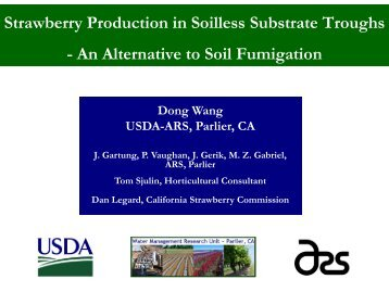 Strawberry Production in Soilless Substrate Troughs - An Alternative ...