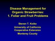 Disease Management for Organic Strawberries - Santa Barbara ...