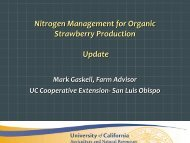 Nitrogen Management for Organic Strawberry Production - Update