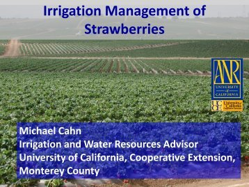 Irrigation Management of Strawberries - Santa Barbara County ...