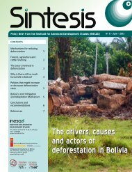 The drivers, causes and actors of deforestation in Bolivia ... - inesad