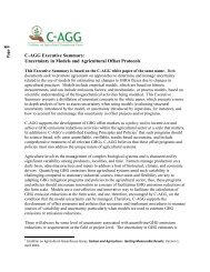 C-AGG Uncertainty Executive Summary V 1 FINAL May 9 2012