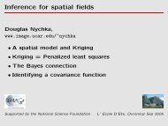 Inference for spatial fields - IMAGe