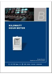 kilowatt hour meter - PEOPLE ELE.APPLIANCE GROUP CHINA