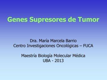 Genes supresores del tumor
