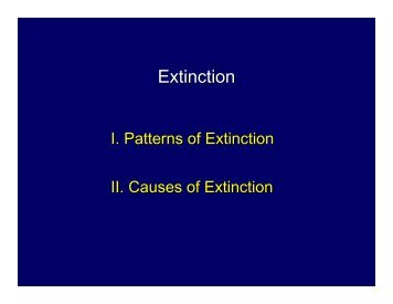 Rate of Extinction - Mama Indstate