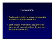Coevolution - Mama Indstate