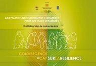 V - Plan de communication. - Africa Adaptation Programme