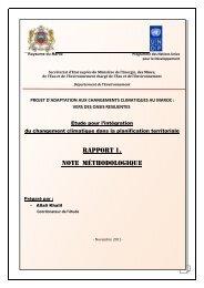 Rapport 1. Note méthodologique - Africa Adaptation Programme
