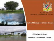 CC Strategy and Action Plan Presentation 2011.pdf - Africa ...